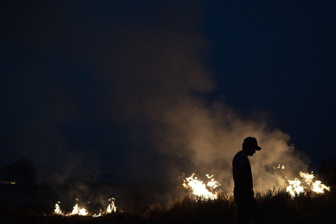 森林野火肆虐亞馬遜。美聯社