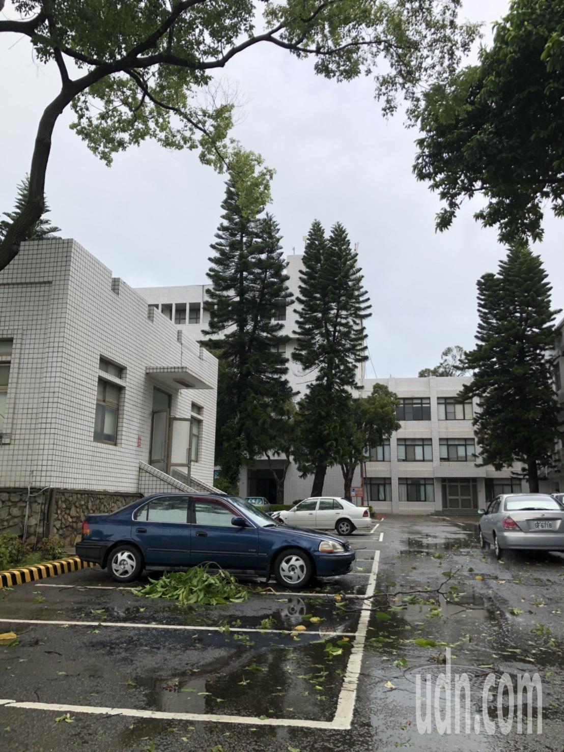 白鹿颱風來勢洶洶,昨晚風大雨大,不少地方都出現斷枝落葉。記者蔡家蓁/攝影