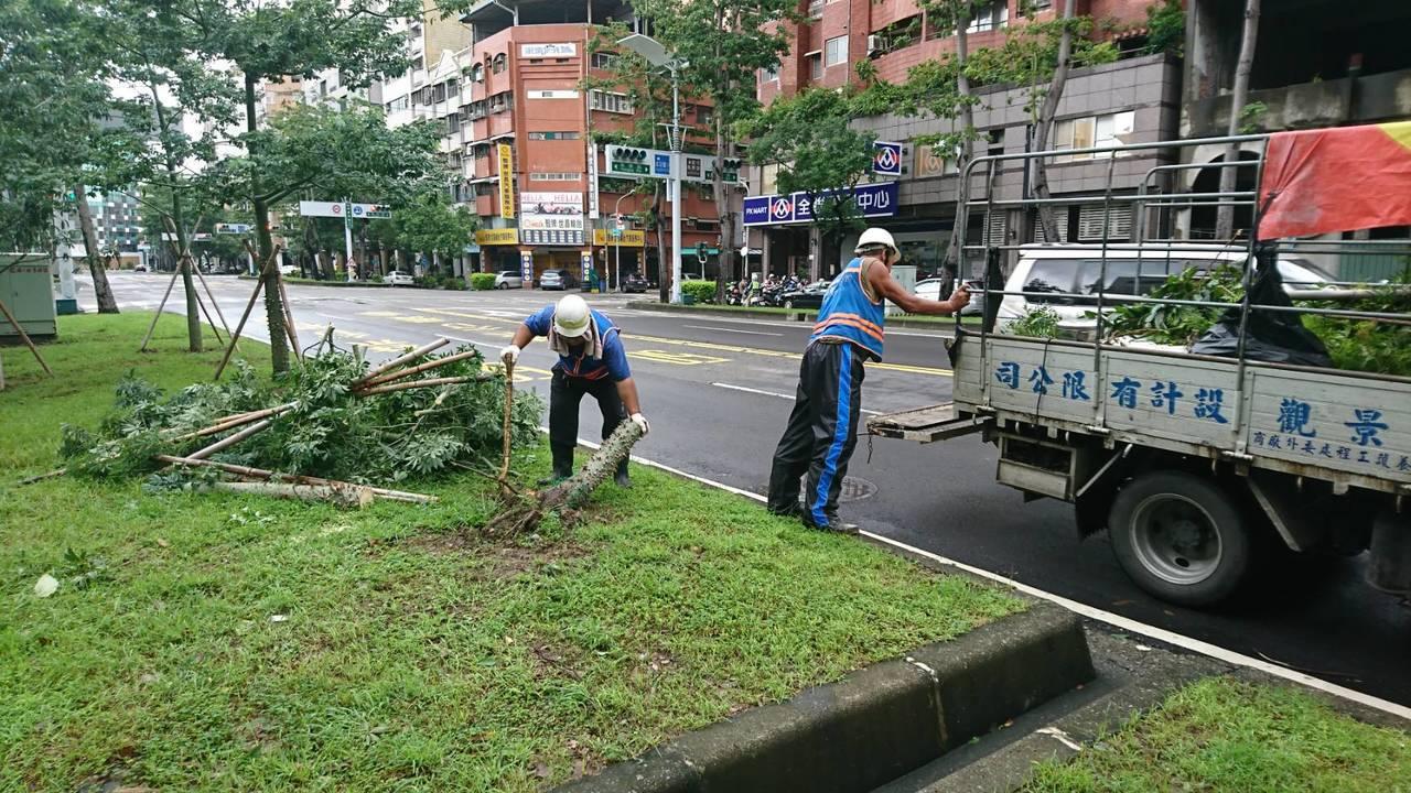 工務局一早就派員沿各街道巡看,先處理影響交通的路樹,再逐步清理傾倒在安全島上的路...