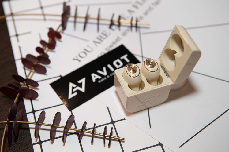AVIOT TE-D01g真無線耳機,建議售價2,990元。圖/AVIOT提供