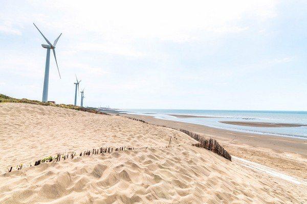藻礁沙丘遊參觀藻礁及草漯沙丘,是最適合拍下各種美照景點。圖/桃園觀旅局提供