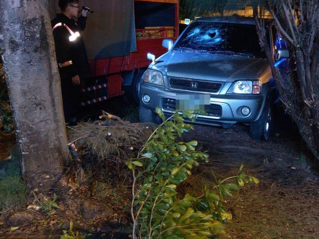 高市阿蓮區一輛休旅車被上方路樹的斷裂樹枝擊破玻璃。記者徐白櫻/翻攝