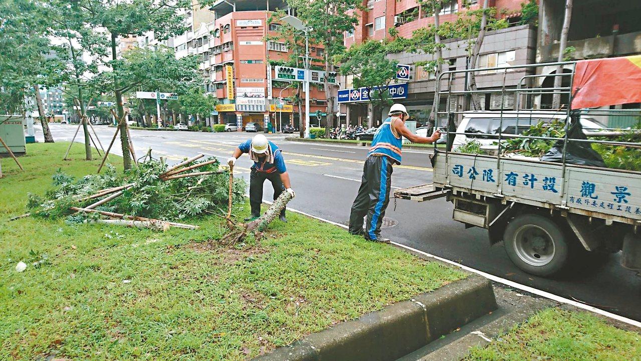 高雄市政府養護工程處人員,清理傾倒在安全島上的路樹。 記者謝梅芬/攝影