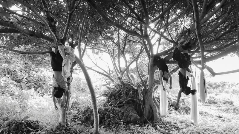 台南藝術大學班芝花劇團的團員們把空中瑜伽的掛布披在身上去行腳,到石梯坪、漁港、樹林等等地方創作、跳舞、做空瑜,找到身體跟大自然之間的連結。圖/方媛提供
