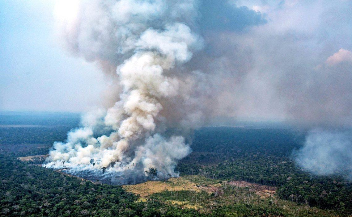 巴西「亞馬遜大火」引發國際震撼。與此同時,大西洋彼端的中非國家,也傳出了更頻繁密...