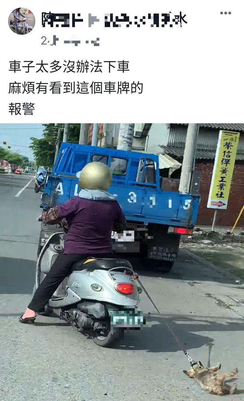 一隻約克夏小狗遭機車拖行,引起網友公憤。記者林敬家/翻攝