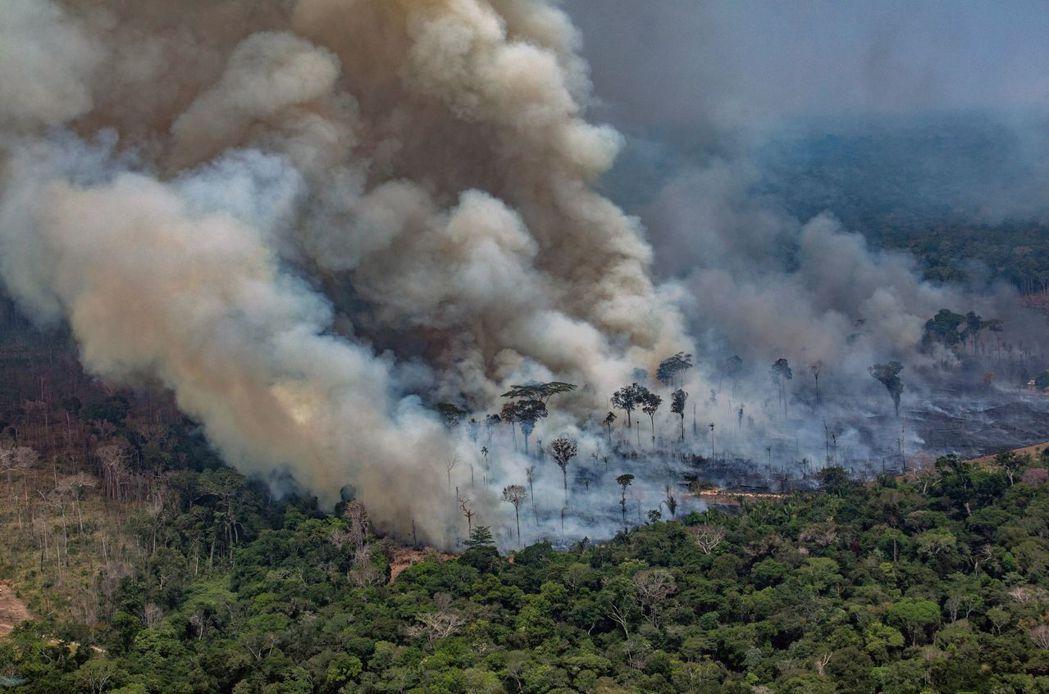 巴西亞馬遜雨林正遭遇野火浩劫,大火已燒了近一個月。 (法新社)