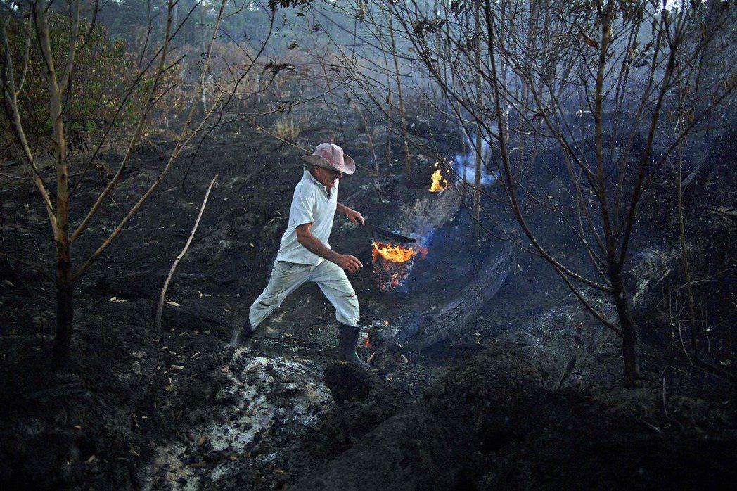 一名巴西農民26日走在遭野火燒毀亞馬遜雨林林地的畫面。 (法新社)