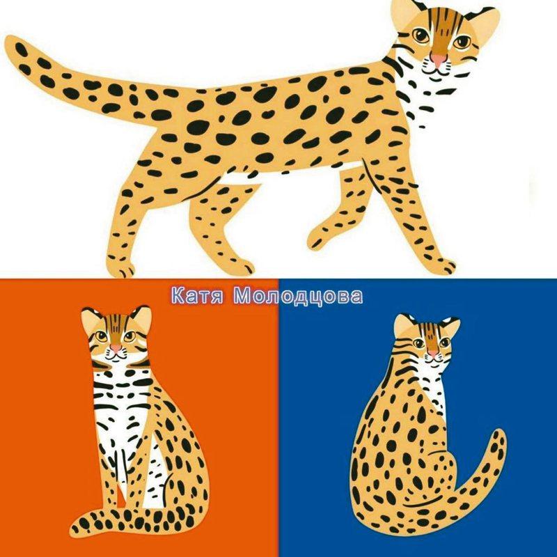 俄羅斯插畫家Катя Mолодцова繪製石虎圖樣,免費讓台灣使用。 圖/取自臉書粉絲團「翻滾毛孩-毛孩出任務」