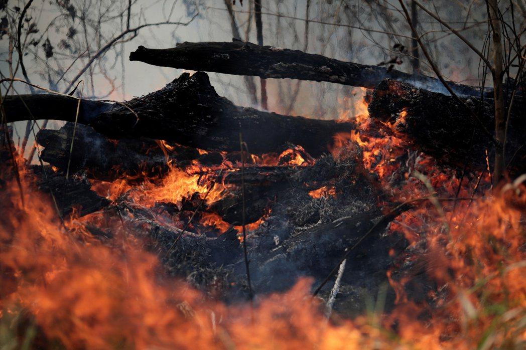 今年夏天,地球之肺亞馬遜雨林陷入長達數周的火海。 圖/黃嘉洵攝影