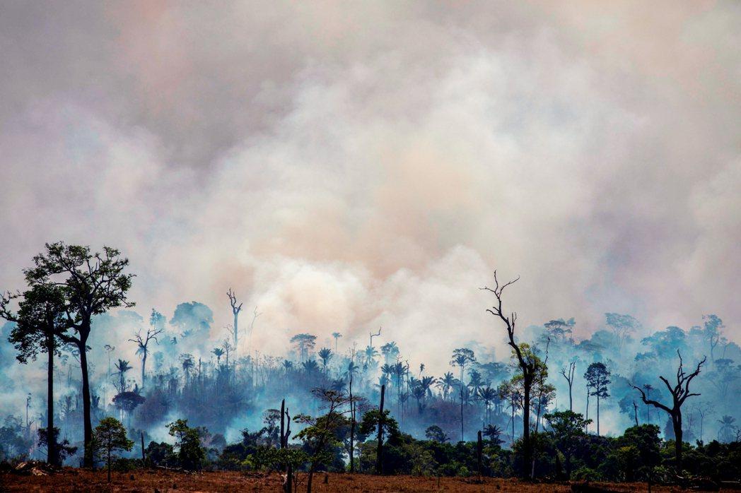 亞馬遜大火持續延燒,各種相關資訊與貼文,在全球瘋傳;如今不僅是環保議題,也牽動著...