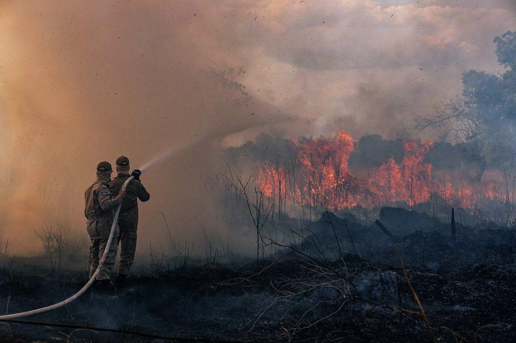 「西方帝國主義干政巴西」「殖民主義心態」「法國趁機阻殺巴西農業」「亞馬遜大火假新...