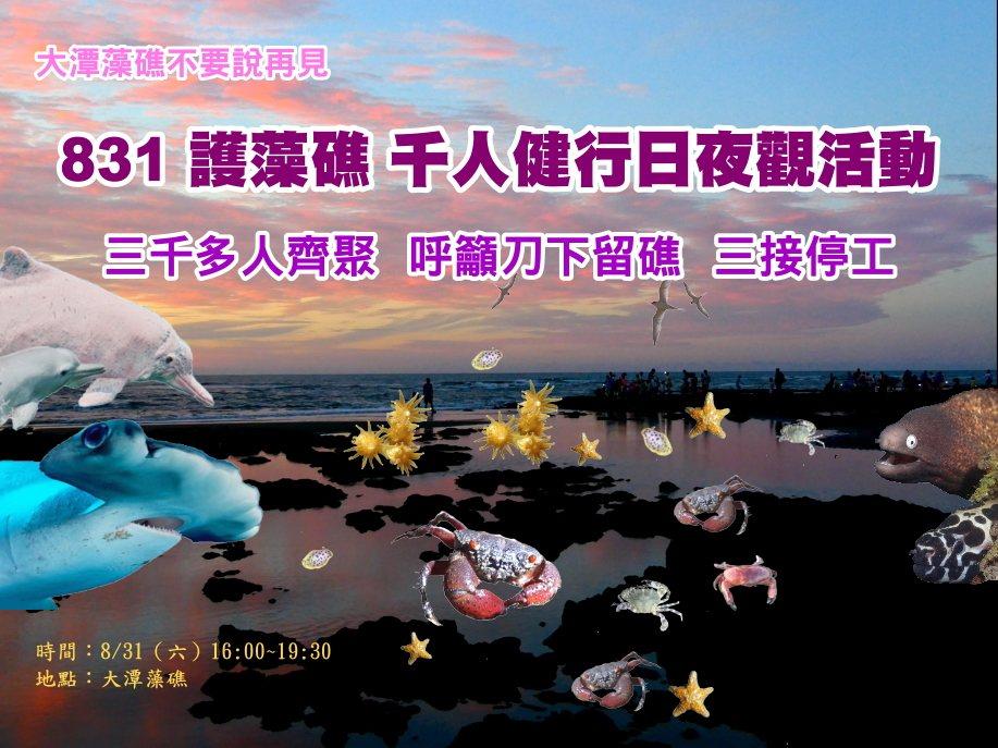 刀下留礁中油三接停工 831護藻礁生態夜觀響應大