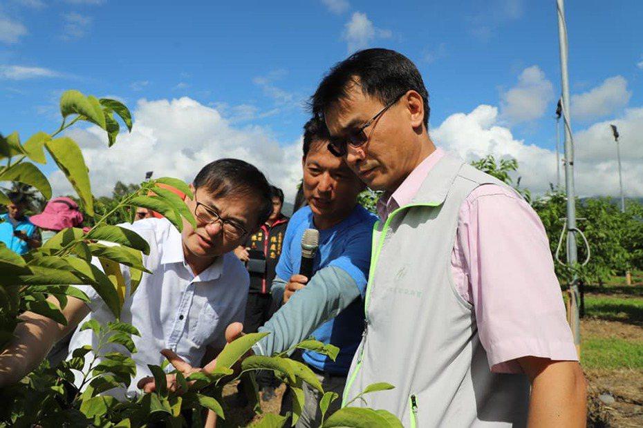 農委會主委陳吉仲(右)今天到台東勘災香蕉與釋迦。圖/取自陳吉仲臉書