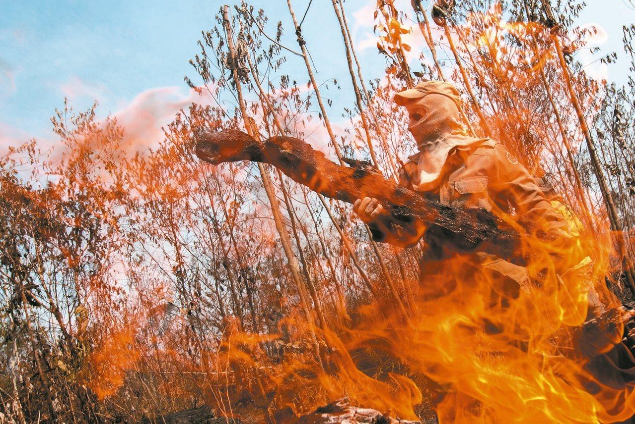 亞馬遜今年森林大火為2010年來規模最大。 歐新社