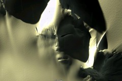 影/外星人現身? Google Map中南極大陸驚見神秘面孔