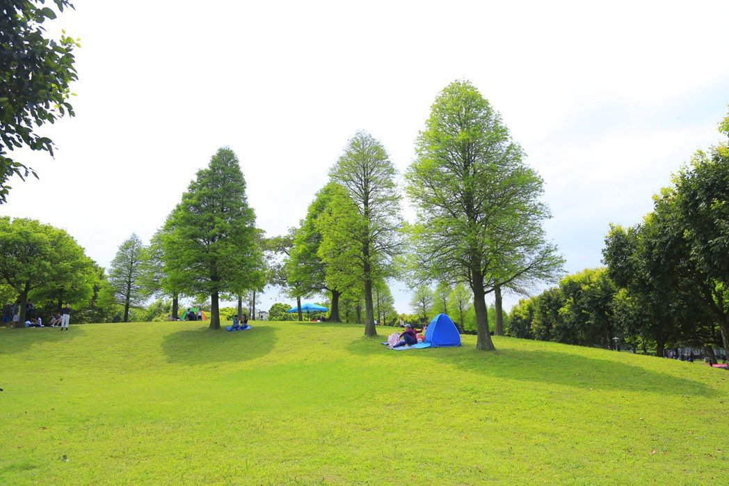 坐落桃園大溪的「埔頂公園」16000坪寬廣佔地,素有北台最美公園稱號。圖/21世...
