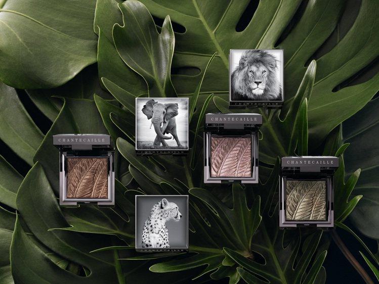香緹卡慈善保育眼彩盤上,印有不同保育動物的照片。圖/香緹卡提供
