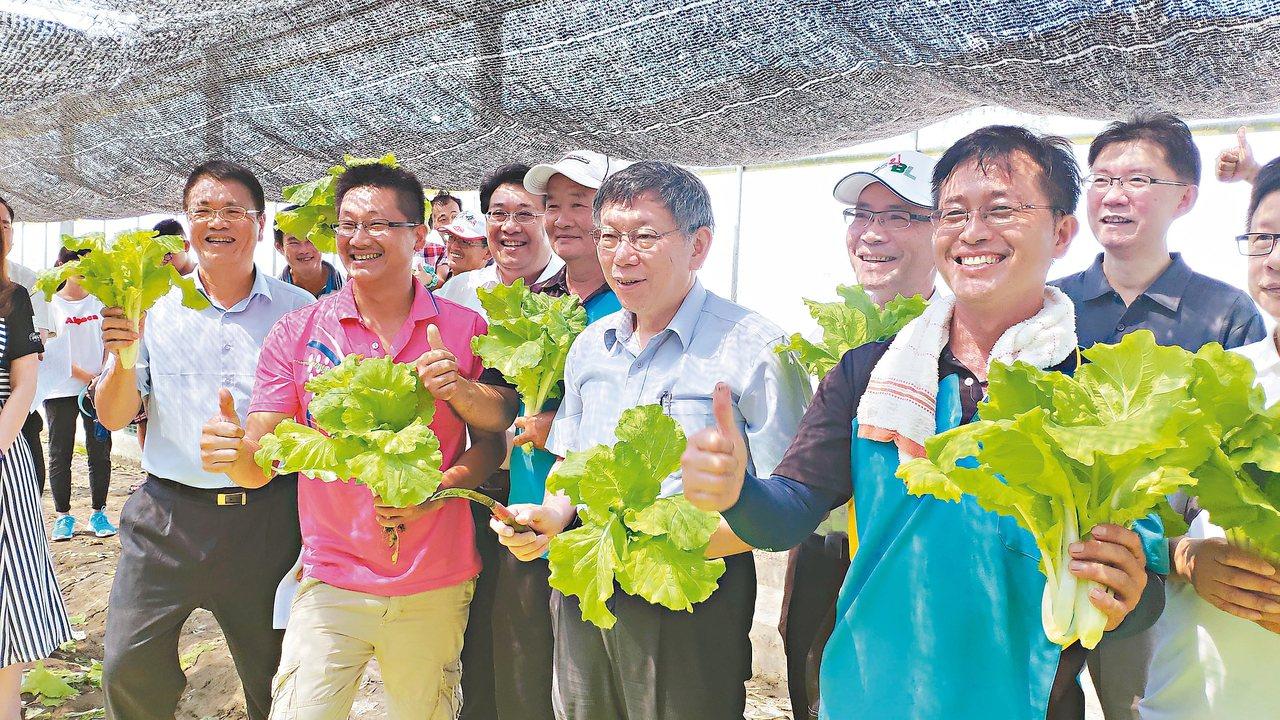 台北市長柯文哲(前右二)昨參訪有機蔬菜農場,談到郭柯王結盟怎麼走?他認為順其自然...