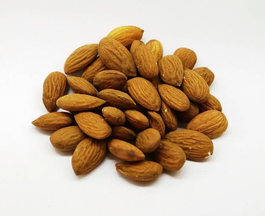 杏仁既可讓您精力充沛,又能增加食慾。 圖/聖馬爾定醫院提供