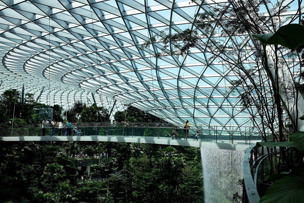 「森林谷」之中有機場連結各航廈的接駁鐡道在頭頂呼囂而過,有專為訪客打造的天空步道在森林頂端蜿蜒,就像一座在機場裡的城中之城。