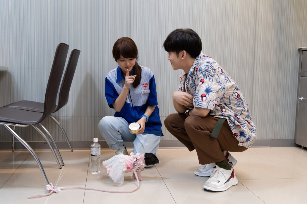 「小樂」吳思賢(右)與項婕如和小豬對戲。圖/三立提供