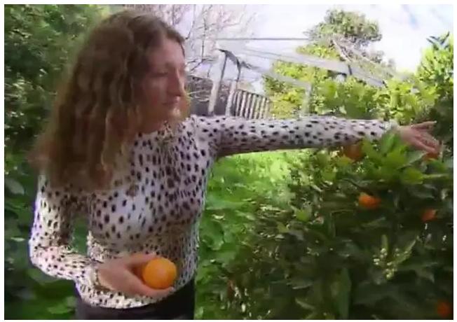 澳洲女子卡登(Cilia Carden)是素食主義者,控訴鄰居在院子烤肉。