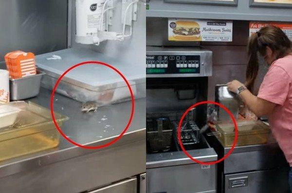美國連鎖速食店Whataburger德州一間分店爆出「鼠輩橫行」,店家員工試著用...