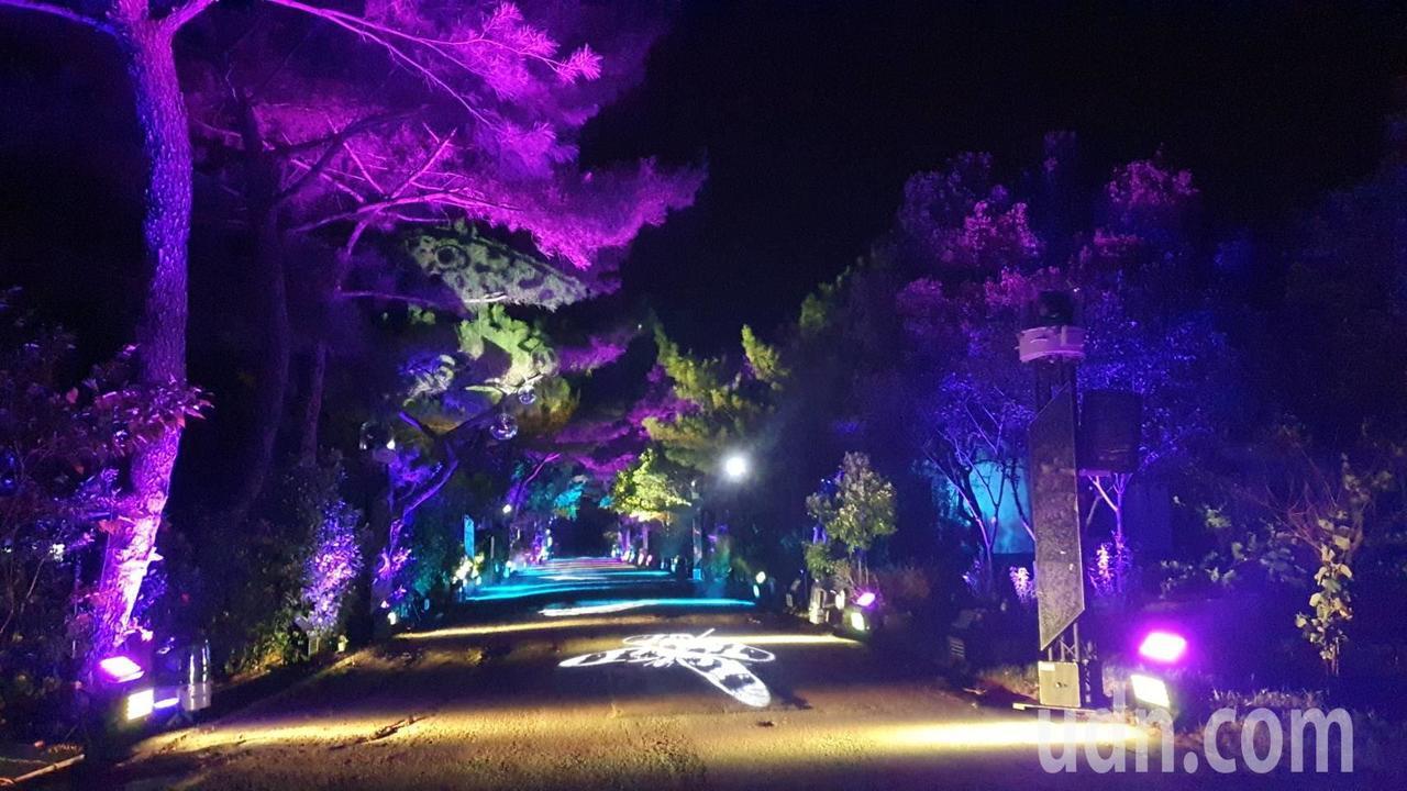 桃園地景藝術節將於這周五開跑,位於大湳森林公園展區的「大湳森之光」光雕展,昨晚施...