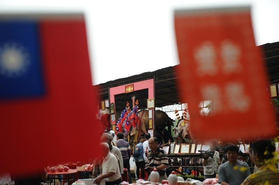 淡水三芝九年一輪的八庄大道公祭祀活動,神豬背上插滿了國旗。 圖/作者自攝