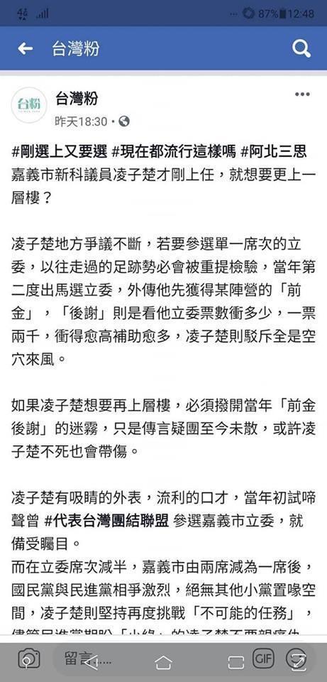 「台灣粉」臉書專頁指嘉義市議員凌子楚要代表台民黨選立委,被凌子楚提告妨害名譽。圖...