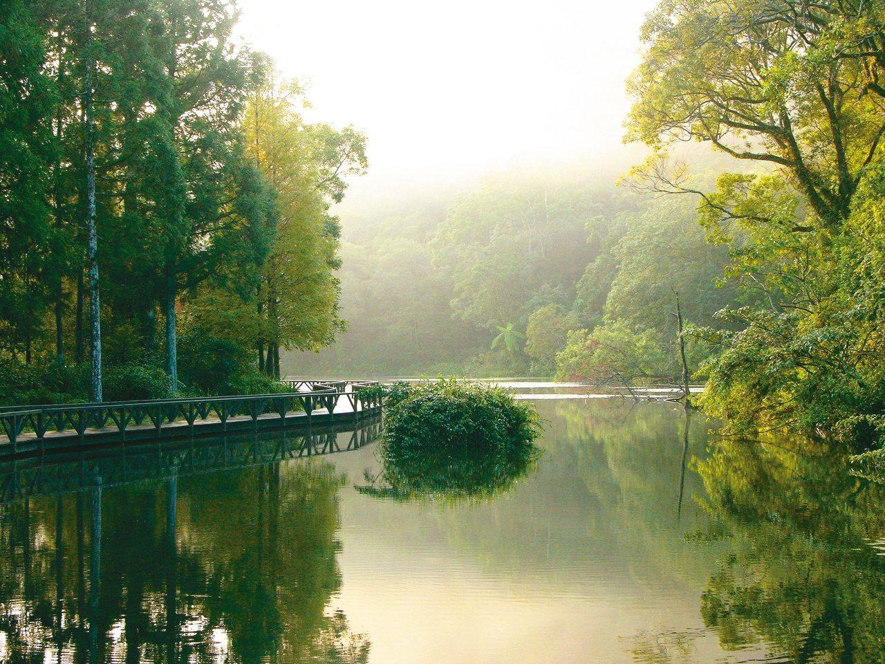福山植物園,林業試驗所最年輕的一座植物園,展示各種台灣的原生植物。 攝影/董景生