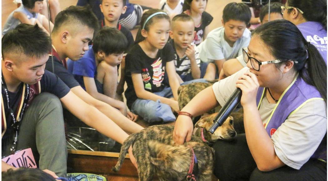 夏日小學堂與世界聯合動物保護協會合作,帶小朋友認識流浪狗。圖/徐培峯 提供