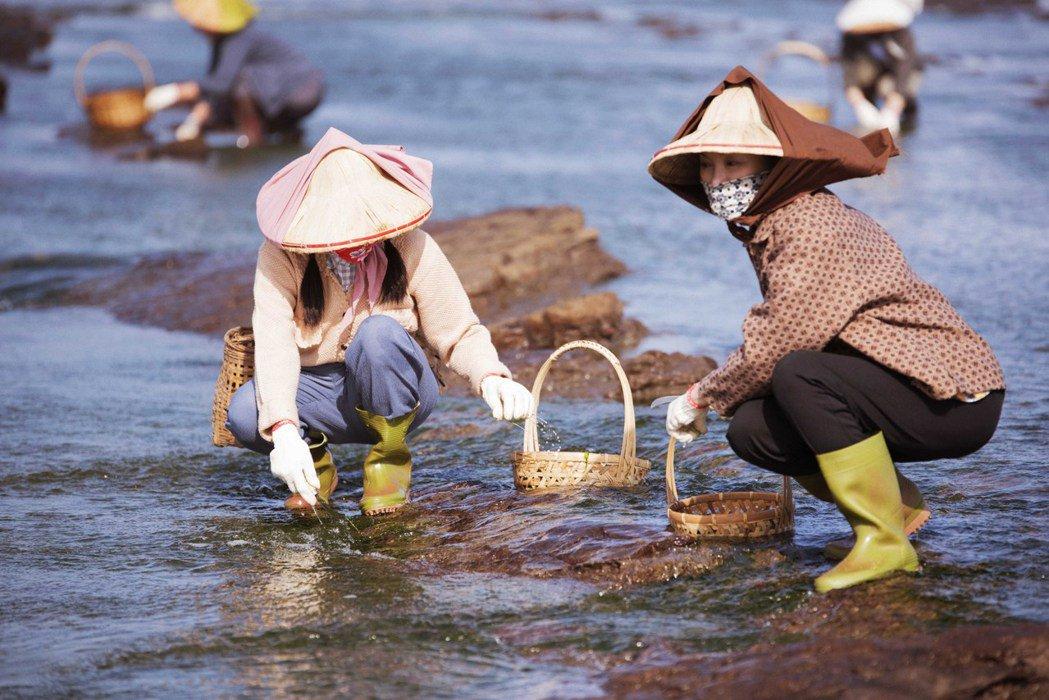 張瓊姿(右)和親生女兒郭思瑜在「苦力」戲中飾演姑姪,還一起到海邊出外景。圖/公視...