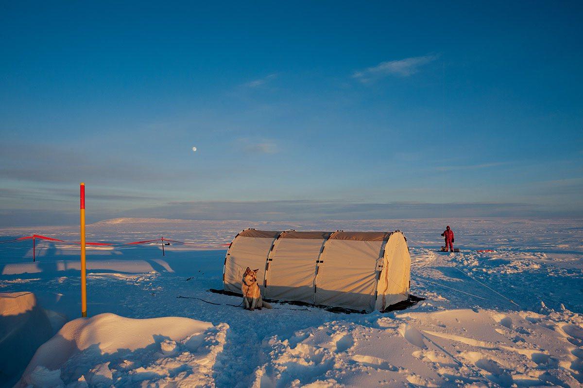 這座臨時帳篷為要24小時監看氣象實驗的研究人員提供庇護。在北站外得隨時警戒北極熊...