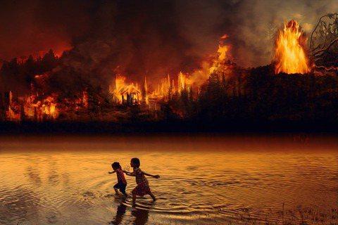 2019年8個月的時間,巴西就發生了超過 75,000 次火災,雨林生態遭到嚴重...