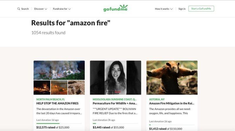 在 GoFundMe 上搜尋,可以看到許多關於亞馬遜大火救災的集資計畫。 圖/G...