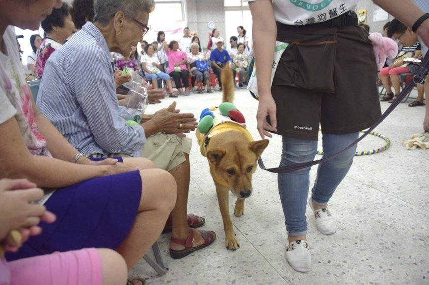專業溫馴的狗醫生為長輩療癒心靈。 安信建經/提供