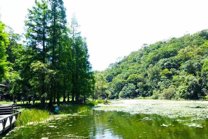 ▲國慶連假玩法推薦-宜蘭福山植物園。(圖/Tripbaa趣吧!亞洲自由行專家)