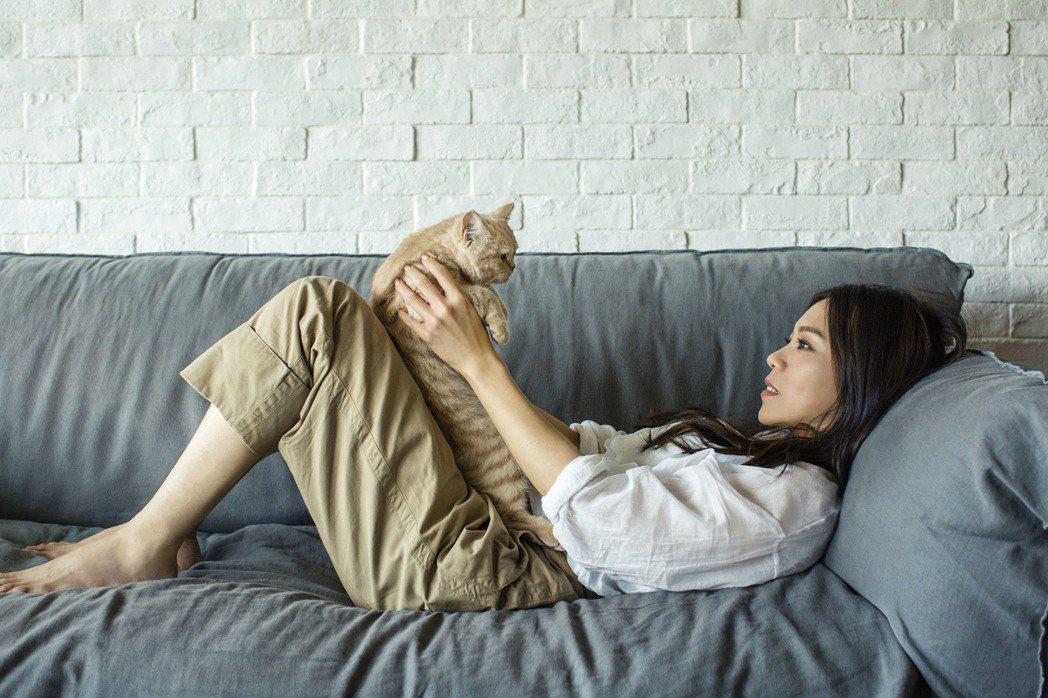 蔡健雅與愛貓一同拍攝演唱會概念影片。圖/Legacy提供