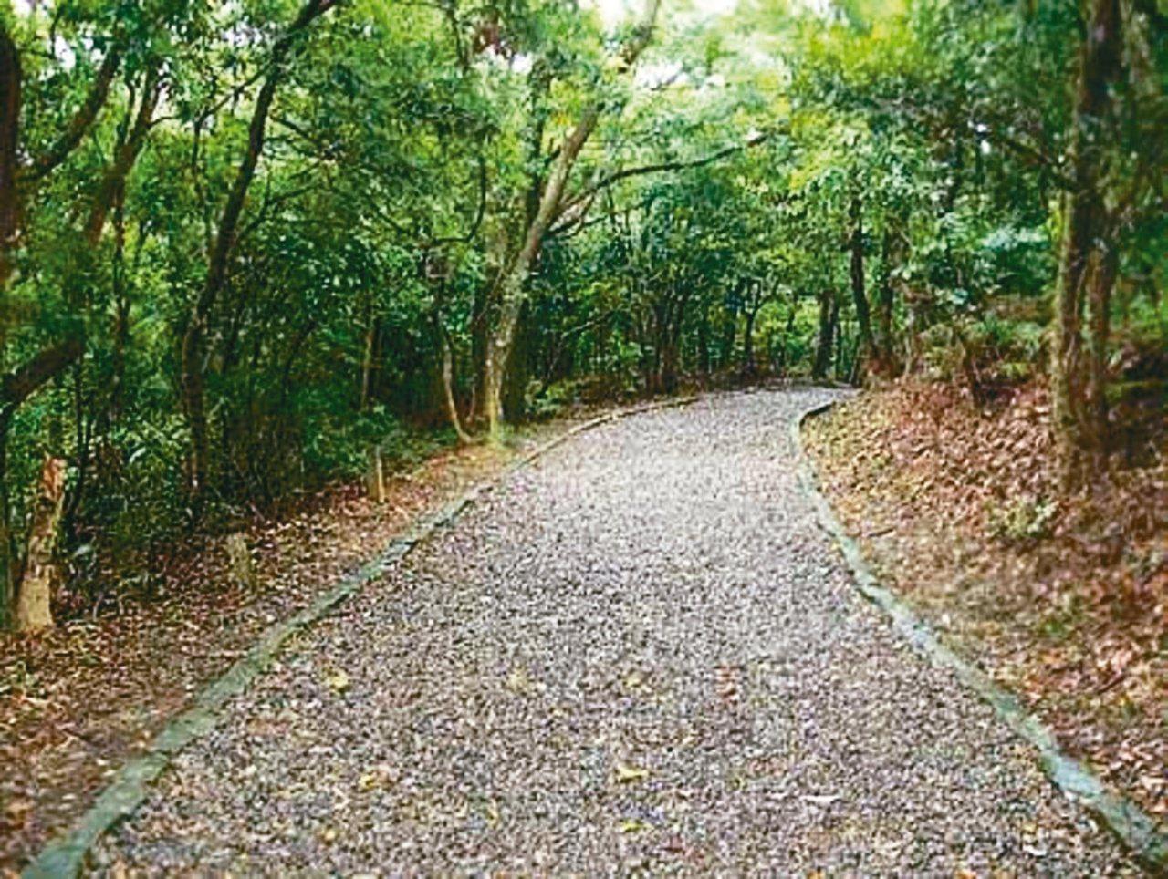 大崙頭尾山親山步道兩側有高聳林蔭,走起來更是涼爽。 圖/摘自台北旅遊網