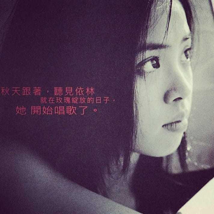 蔡依林在臉書曝光巡演造勢海報。圖/摘自臉書