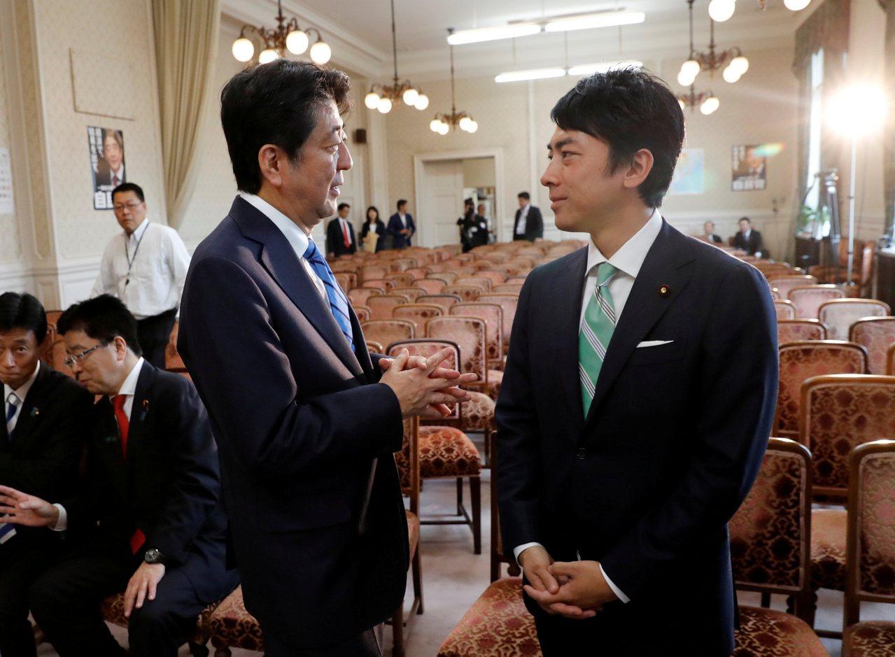日本首相安倍晉三(左)11日將宣布內閣改組,同黨新生代議員小泉進次郎(右)首度入...