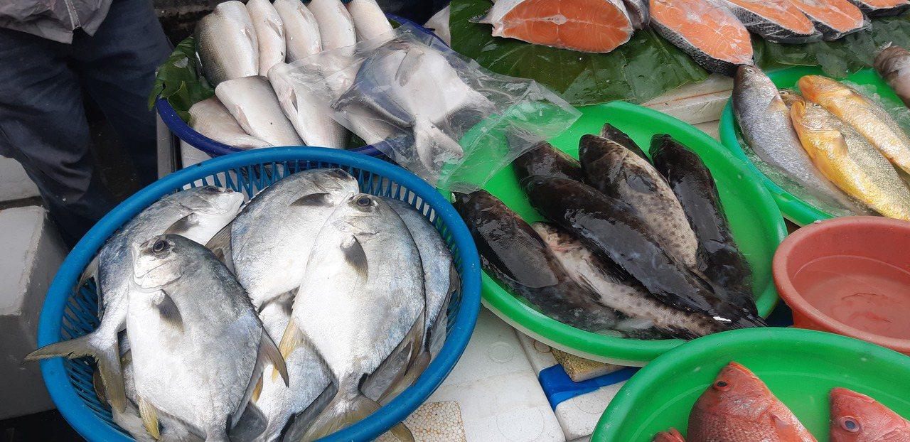 國人每人每年的魚類消費量大幅衰退,產業團體說,應從食魚教育、食魚文化開始教起,從...
