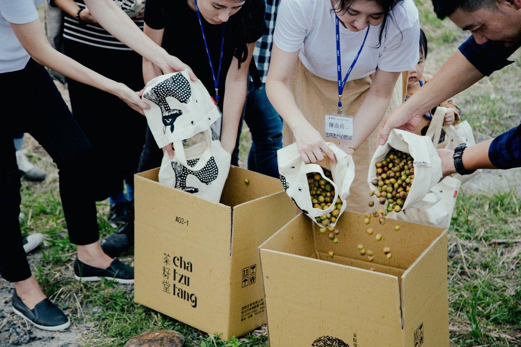 復興茶籽產業,趙文豪也串連起農產、土地、文化,找出新能量。 圖/茶籽堂提供