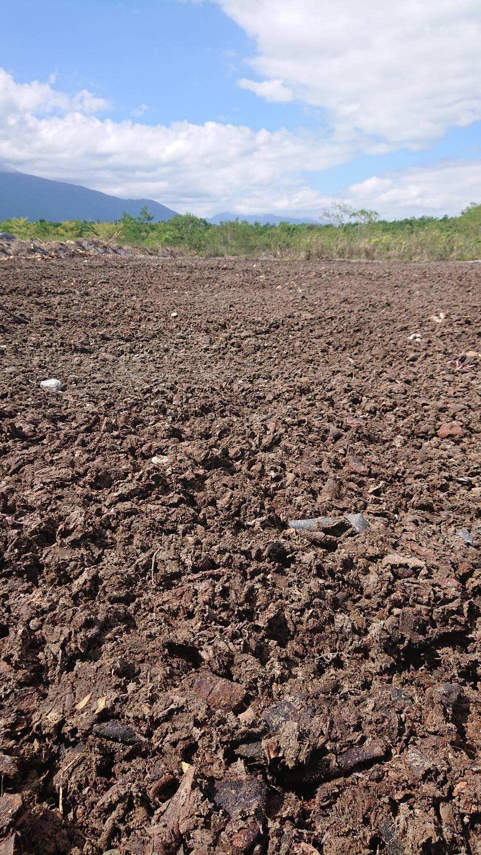 農糧署指柚子堆肥可幫助土壤更加肥沃。圖/農糧署提供
