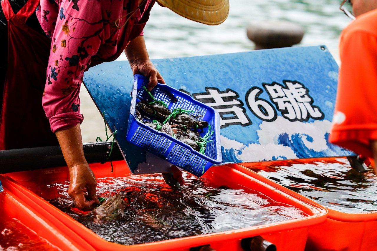 假日活蟹市集即將登場,民眾可來漁港採購當季最新鮮的萬里蟹。圖/新北市漁業處提供