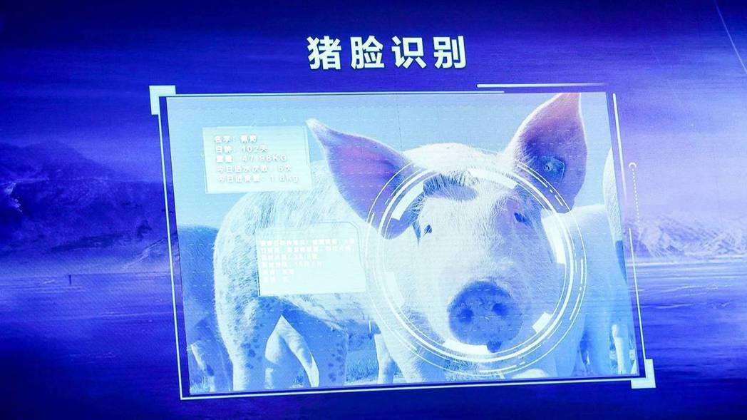京東數字科技旗下子品牌京東農牧,利用人工智慧技術推動養豬業升級,甚至還推出了「豬...