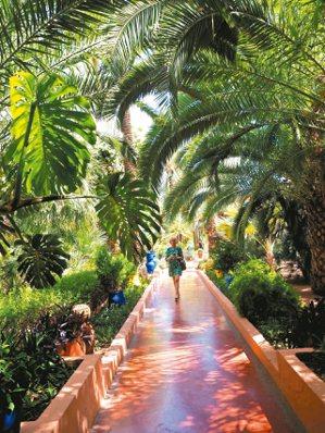 聖羅蘭花園雅致優美。 圖/羅建怡
