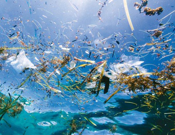 ORIS與太平洋垃圾篩選組織合作,以回收PET塑料製作潔淨海洋限量腕表。圖/豪利...